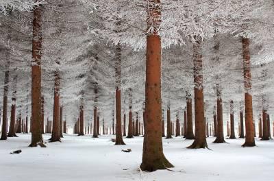 20個令人驚艷的冰與雪的世界