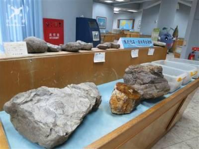 遊山城/重返侏儸紀 甲仙化石之旅