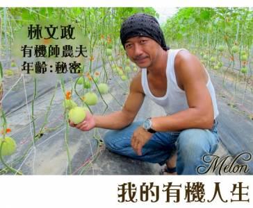 【探寶愛呷】後龍秀水有機香瓜