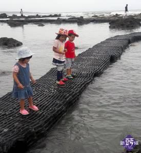 後山小調~富山海岸不能餵魚和魚群互動了
