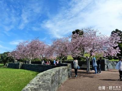 台灣人10大最愛海外旅遊地 日本就佔4席