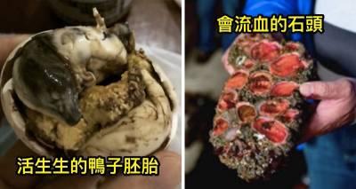 6 種比吃『活胚胎』還要更神奇的超營養食物,比普通食物還強100倍! 4連「死人的手指」都可以吃?!