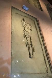 探秘古蜀文明,走進金沙遺址博物館