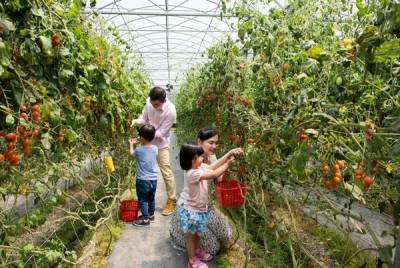 帶孩子體驗自然農家樂吧~入住長榮鳳凰酒店(礁溪),夏日正是親子旅行的好時機!