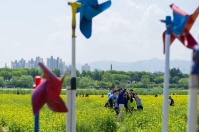 與韓國其他的壁畫村有些不一樣...!4條大邱輕旅行路線,別只停留在首爾當觀光客了~