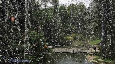 不能錯過的吉隆坡飛禽公園