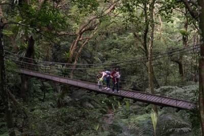 全台灣唯一的亞熱帶雨林在這裡!與寶貝們一起上山下海跑跳碰吧~~「這兩項寶物」絕對讓你玩得盡興!