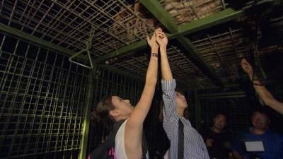 邵雨薇與房思瑜近距離與老虎 獅子接觸驚嚇連連 「峇里島」可以這樣玩樂,超刺激!