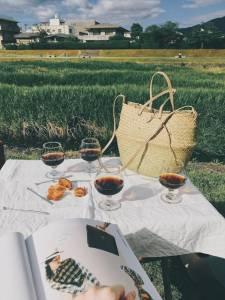 夏日野餐,淺嚐鴨川愜意