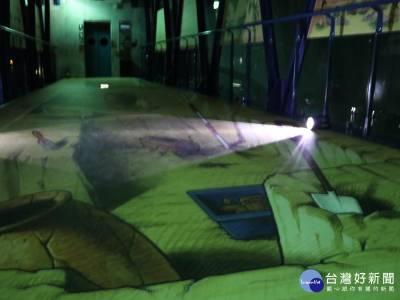 夜宿十三行博物館 睡在四層樓高3D考古探坑中
