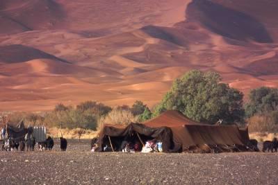 「無論路途如何漫長,走到盡頭,總有一口井在那兒!」一同守護撒哈拉沙漠的美麗,來一趟生態旅遊...
