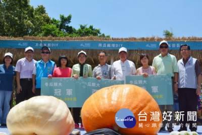 南瓜競大 金瓜饗宴 農村記憶融入桃園地景藝術節