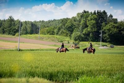 騎馬進魔法森林 夏天到北海道這樣玩