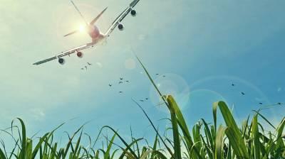 帶孩子長途飛行有方法