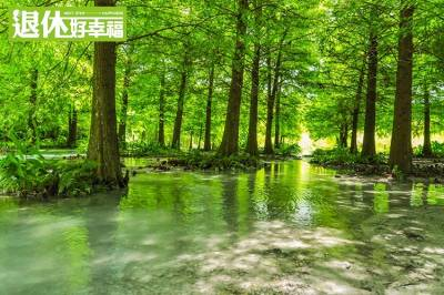 縱谷間的秘境!以自然作畫,美如仙境的童話世界,東部新興的景點在這...