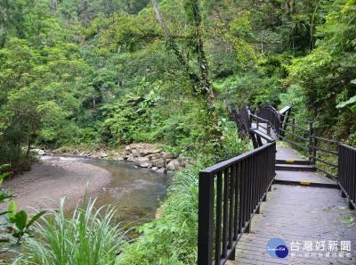 探尋步道大自然美景 新北森林步道輕旅行受青睞