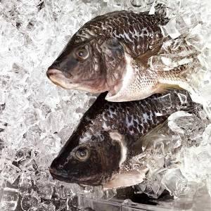 魚蝦這樣吃才安心~吃魚十大守則|台灣好食材